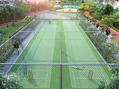 Cricket Net Area